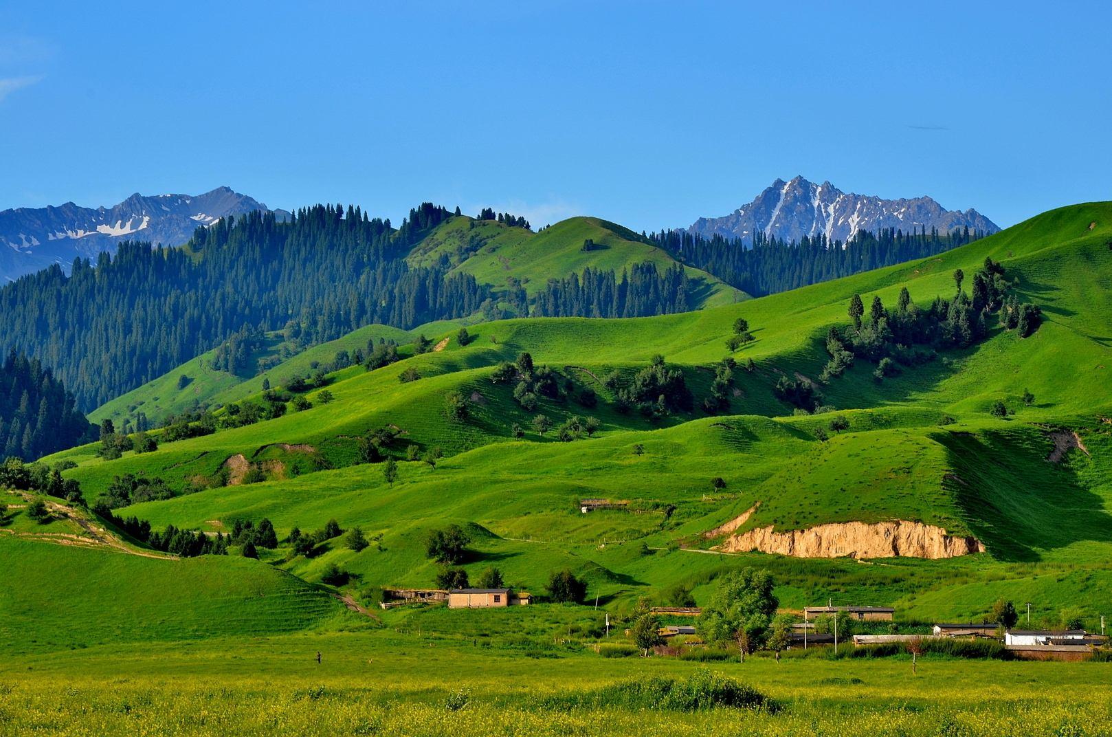 新疆伊犁那拉提草原风光,景色迷人秀美,令人沉醉